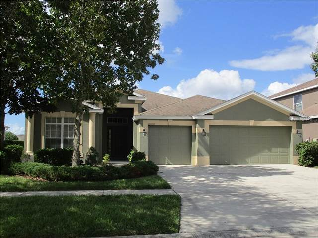 10056 Celtic Ash Drive, Ruskin, FL 33573 (MLS #O5900414) :: Armel Real Estate