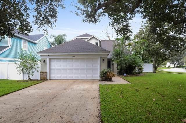 2849 Waymeyer Drive, Orlando, FL 32812 (MLS #O5900640) :: Carmena and Associates Realty Group