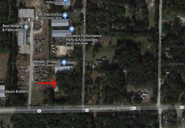 31535 Long Acres Drive, Sorrento, FL 32776 (MLS #O5901784) :: Griffin Group