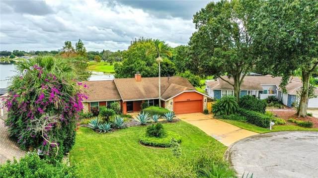 8205 Granada Boulevard, Orlando, FL 32836 (MLS #O5904723) :: Bustamante Real Estate