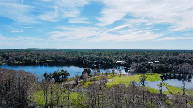 1207 Tall Pines Drive, Osteen, FL 32764 (MLS #O5906531) :: Bob Paulson with Vylla Home