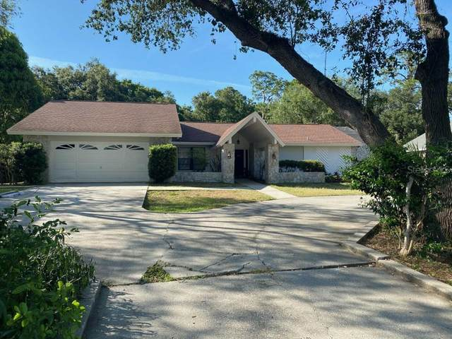 610 Lafayette Boulevard, Oldsmar, FL 34677 (MLS #O5915887) :: Keller Williams Realty Peace River Partners