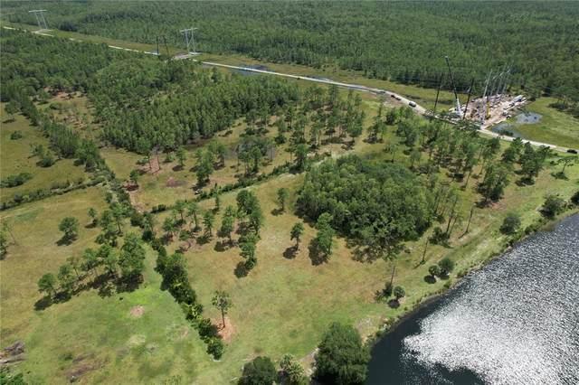 4 Fort Christmas Rd, Christmas, FL 32709 (MLS #O5917751) :: Everlane Realty