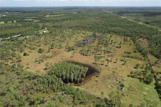 2 Fort Christmas Rd, Christmas, FL 32709 (MLS #O5917891) :: Everlane Realty