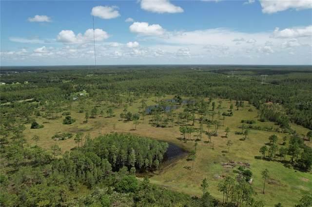 1 Fort Christmas Rd, Christmas, FL 32709 (MLS #O5917893) :: Everlane Realty