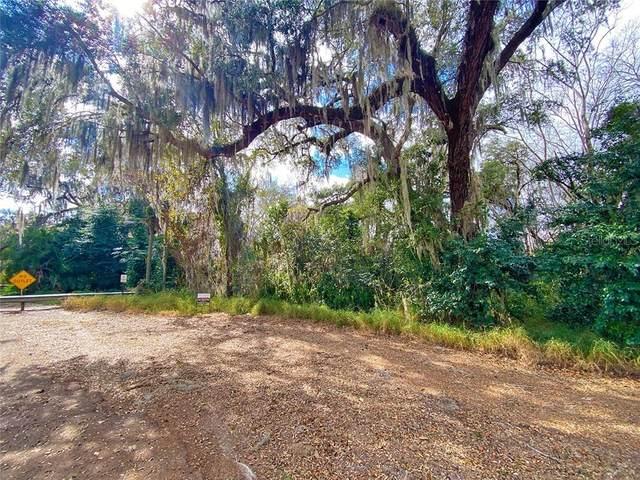 3RD Street, Montverde, FL 34756 (MLS #O5918535) :: Armel Real Estate