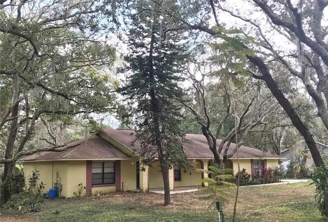 431 Cinnamon Bark Lane, Orlando, FL 32835 (MLS #O5918851) :: Everlane Realty