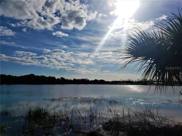 3442 Lake Diane Road, Tavares, FL 32778 (MLS #O5922600) :: Vacasa Real Estate