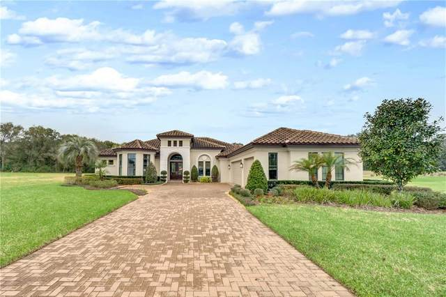 31808 Halfway Court, Sorrento, FL 32776 (MLS #O5924094) :: The Duncan Duo Team