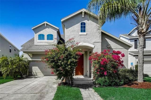 321 Peacock Springs Court, Groveland, FL 34736 (MLS #O5926215) :: Team Bohannon Keller Williams, Tampa Properties