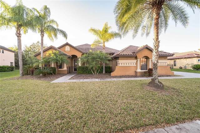 3715 Marbury Court, Land O Lakes, FL 34638 (MLS #O5927766) :: Rabell Realty Group