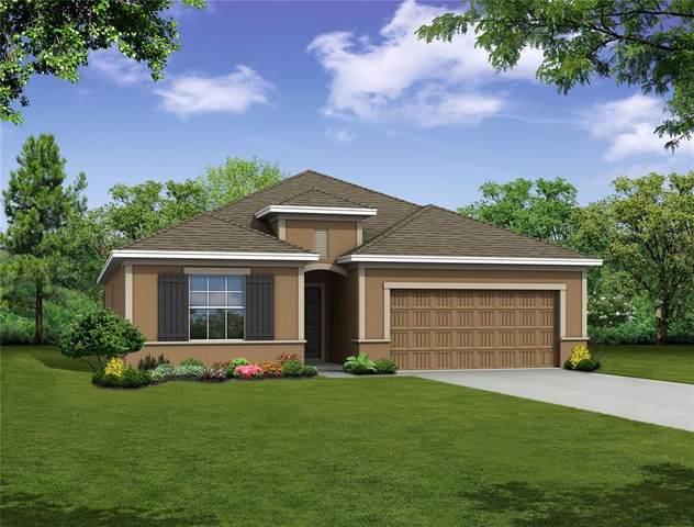 341 Villa Sorrento Circle, Haines City, FL 33844 (MLS #O5931365) :: Rabell Realty Group