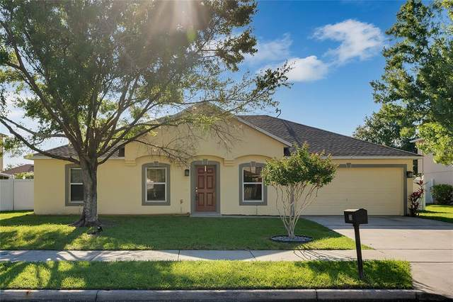 33 Timbercreek Pines Circle, Winter Garden, FL 34787 (MLS #O5933768) :: Century 21 Professional Group
