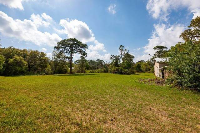 280 Clinton Cemetery Road, Edgewater, FL 32141 (MLS #O5934187) :: Southern Associates Realty LLC