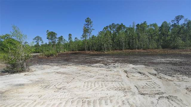 Lot 12 Omega Ranch Road, New Smyrna Beach, FL 32168 (MLS #O5939921) :: The Lersch Group