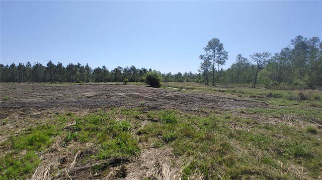 Lot 13 Omega Ranch Road, New Smyrna Beach, FL 32168 (MLS #O5939925) :: The Lersch Group