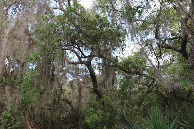 2050 Lorene Lane, Deltona, FL 32738 (MLS #O5940332) :: Zarghami Group