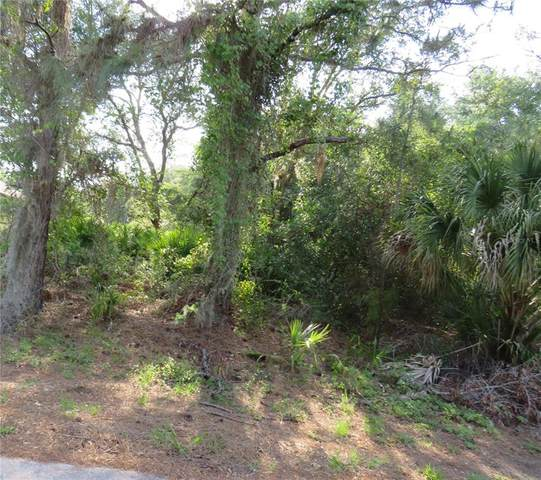 Jarvis Street, North Port, FL 34288 (MLS #O5941224) :: MVP Realty