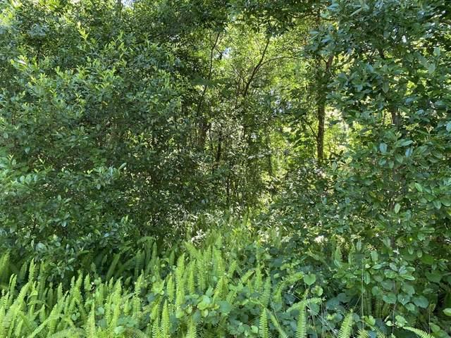 260 Acorn Drive, Longwood, FL 32750 (MLS #O5942992) :: Tuscawilla Realty, Inc