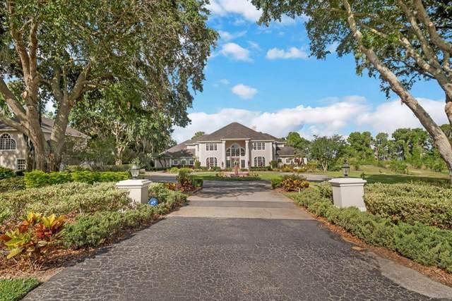 11093 Lane Park Road, Tavares, FL 32778 (MLS #O5943384) :: Team Borham at Keller Williams Realty