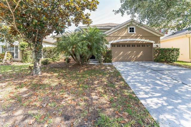 10802 Arbor View Boulevard, Orlando, FL 32825 (MLS #O5943631) :: Positive Edge Real Estate