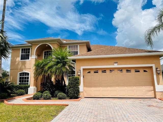 14683 Braddock Oak Drive, Orlando, FL 32837 (MLS #O5946986) :: Bustamante Real Estate