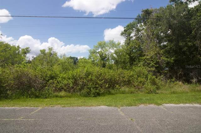 274 Toms Road, Debary, FL 32713 (MLS #O5947374) :: Premium Properties Real Estate Services