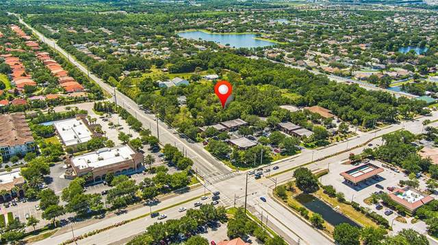 11077 Roberson Road, Winter Garden, FL 34787 (MLS #O5949480) :: CGY Realty