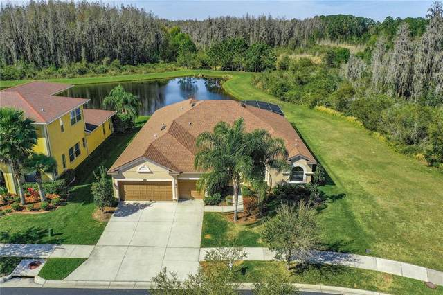 2195 Gwynhurst Boulevard, Wesley Chapel, FL 33543 (MLS #O5949899) :: Delgado Home Team at Keller Williams
