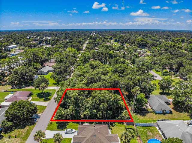 Juniper Drive, Edgewater, FL 32141 (MLS #O5951483) :: Cartwright Realty