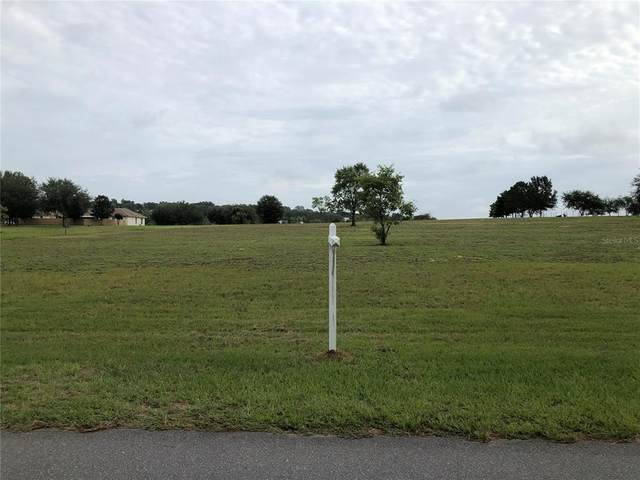 Sugarloaf Mountain Road, Clermont, FL 34715 (MLS #O5951668) :: Griffin Group