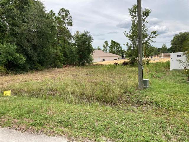 1433 Tern Court, Poinciana, FL 34759 (MLS #O5952419) :: The Robertson Real Estate Group