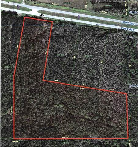 State Road 60 E, Lake Wales, FL 33898 (MLS #O5952713) :: Prestige Home Realty