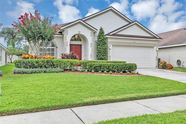 5122 Marbella Isle Drive, Orlando, FL 32837 (MLS #O5953493) :: Zarghami Group
