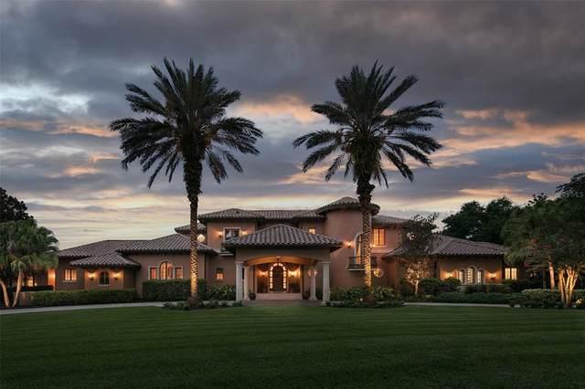 9718 Chestnut Ridge Drive, Windermere, FL 34786 (MLS #O5955986) :: Rabell Realty Group