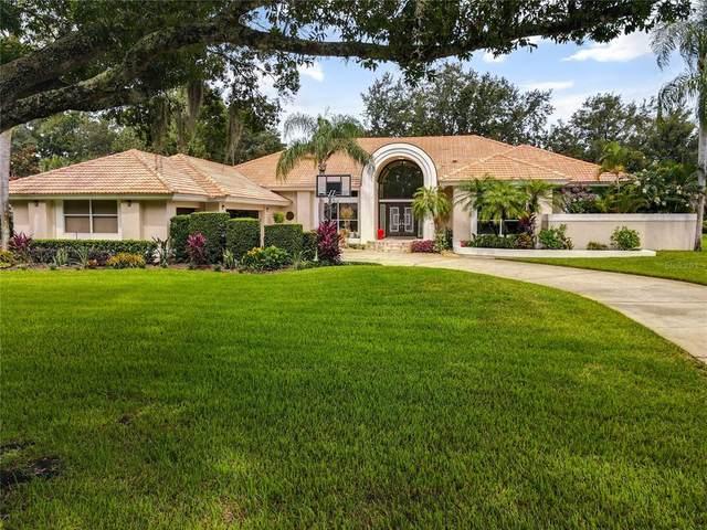 12819 Butler Bay Court, Windermere, FL 34786 (MLS #O5956819) :: Zarghami Group