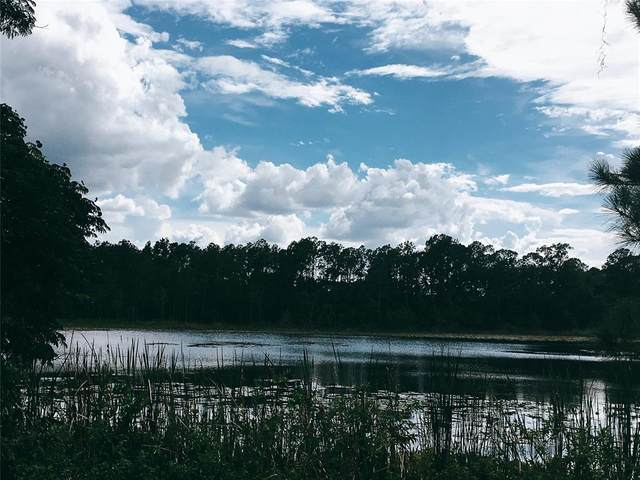 9444 Lake Hickory Nut Drive, Winter Garden, FL 34787 (MLS #O5957916) :: Sarasota Gulf Coast Realtors
