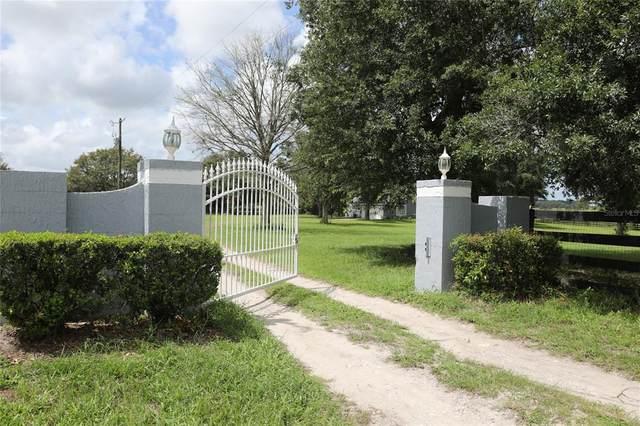 31825 Investor Road, Sorrento, FL 32776 (MLS #O5958364) :: Zarghami Group