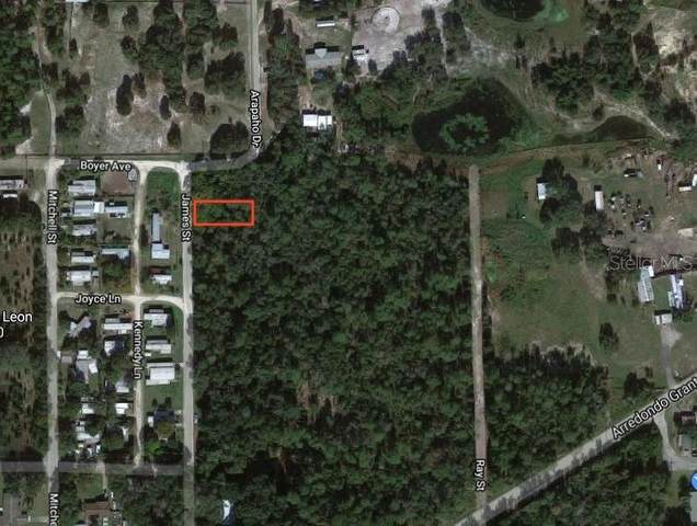 James St, De Leon Springs, FL 32130 (MLS #O5958382) :: The Paxton Group