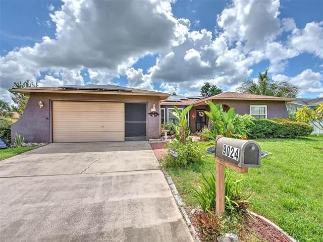 9024 Glen Moor Lane, Port Richey, FL 34668 (MLS #O5959160) :: Zarghami Group