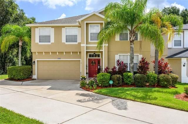 10037 Oak Crest Road, Orlando, FL 32829 (MLS #O5959487) :: Aybar Homes