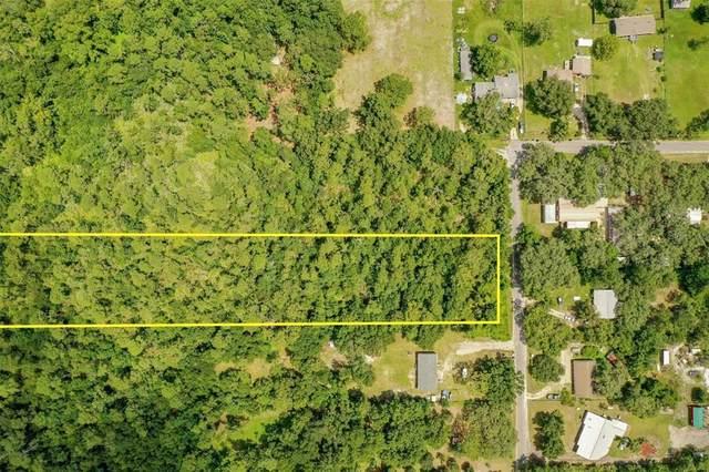 848 Hamilton Drive, Orlando, FL 32833 (MLS #O5959521) :: Premium Properties Real Estate Services