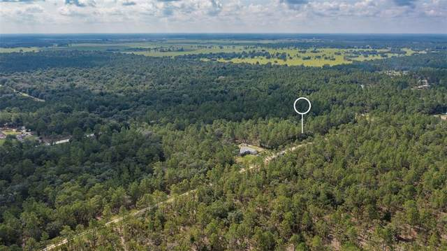 TBD SW 123RD AVE Road, Ocala, FL 34481 (MLS #O5960070) :: Premium Properties Real Estate Services