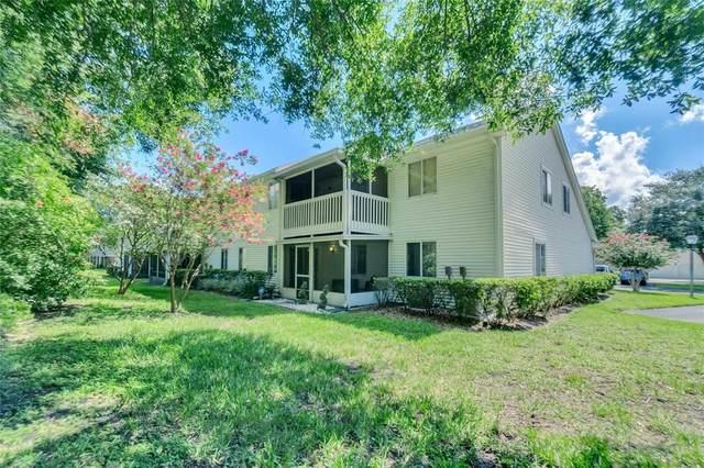 2246 Coach House Boulevard #502, Orlando, FL 32812 (MLS #O5960413) :: Zarghami Group