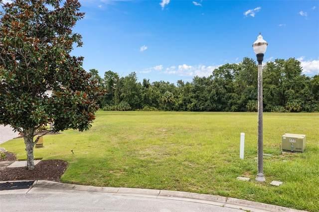 1203 Wynstone Way, Reunion, FL 34747 (MLS #O5961008) :: Globalwide Realty