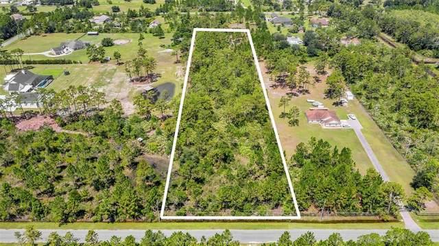 Archer Avenue, Orlando, FL 32833 (MLS #O5961040) :: The Heidi Schrock Team