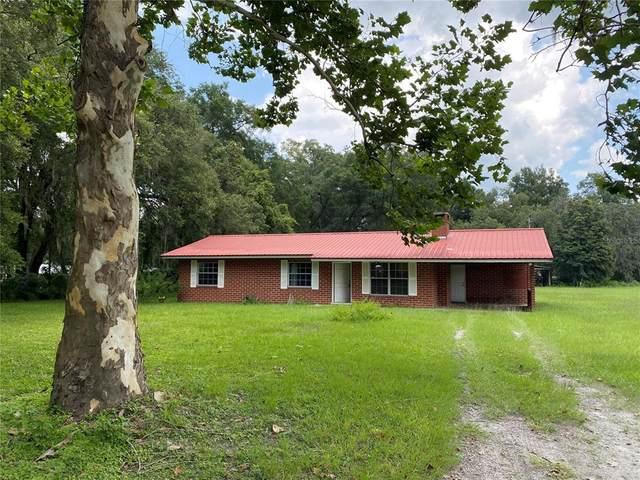 905 SE Highway 42, Summerfield, FL 34491 (MLS #O5961466) :: Pristine Properties