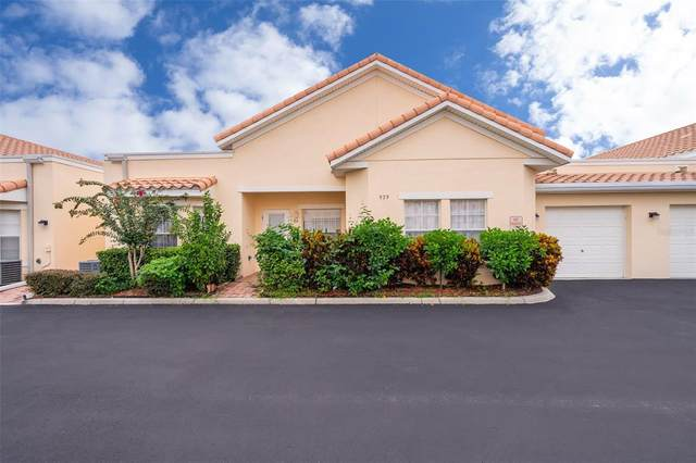 979 David Walker Drive E-6, Tavares, FL 32778 (MLS #O5966806) :: American Premier Realty LLC