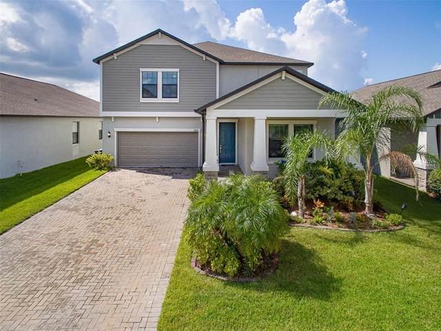 13207 Haystack Court, Riverview, FL 33579 (MLS #O5972072) :: Zarghami Group
