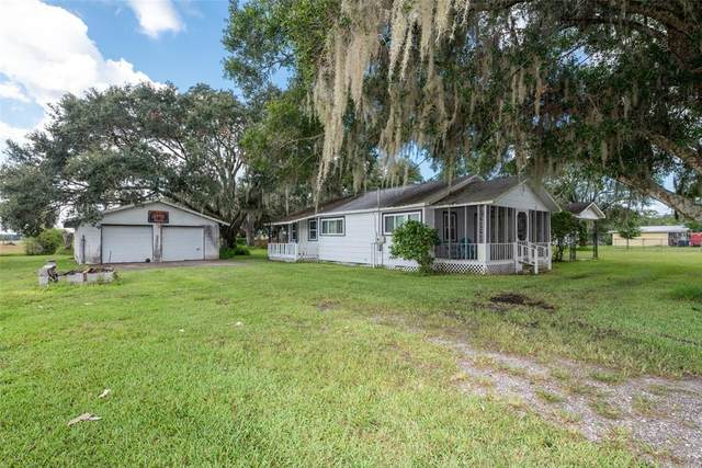 5817 Durant Rd., Dover, FL 33527 (MLS #O5972207) :: Globalwide Realty